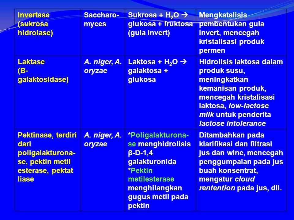 Invertase (sukrosa hidrolase)