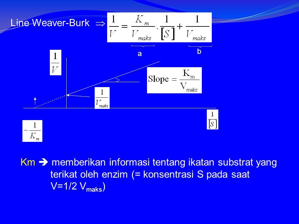 Km  memberikan informasi tentang ikatan substrat yang