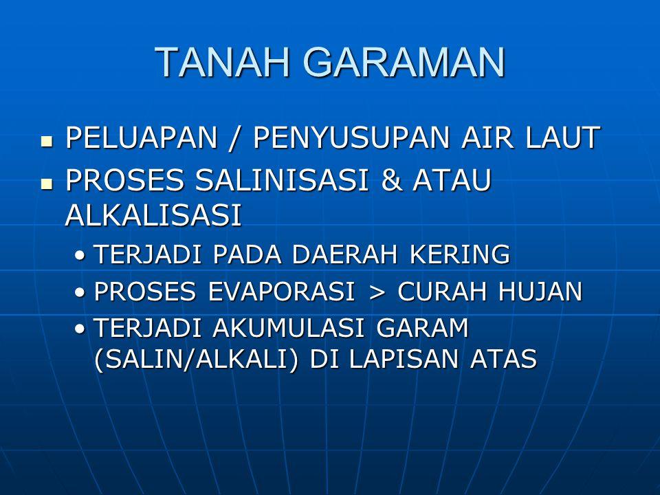 TANAH GARAMAN PELUAPAN / PENYUSUPAN AIR LAUT