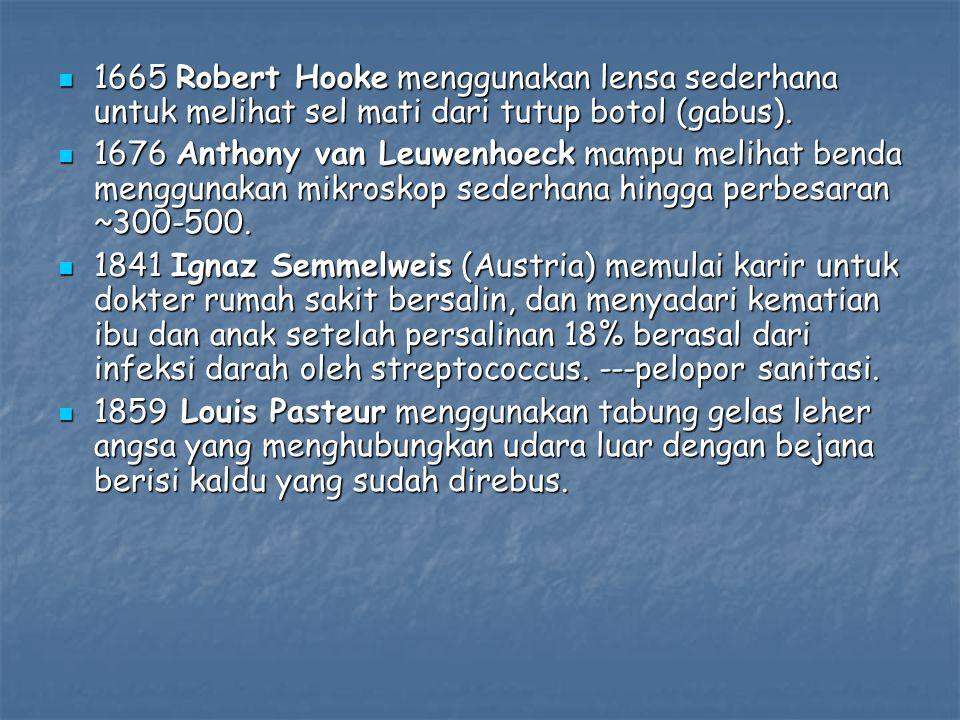 1665 Robert Hooke menggunakan lensa sederhana untuk melihat sel mati dari tutup botol (gabus).