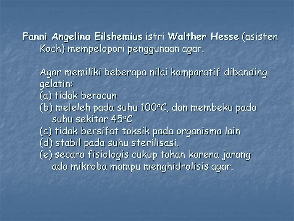 Fanni Angelina Eilshemius istri Walther Hesse (asisten Koch) mempelopori penggunaan agar.