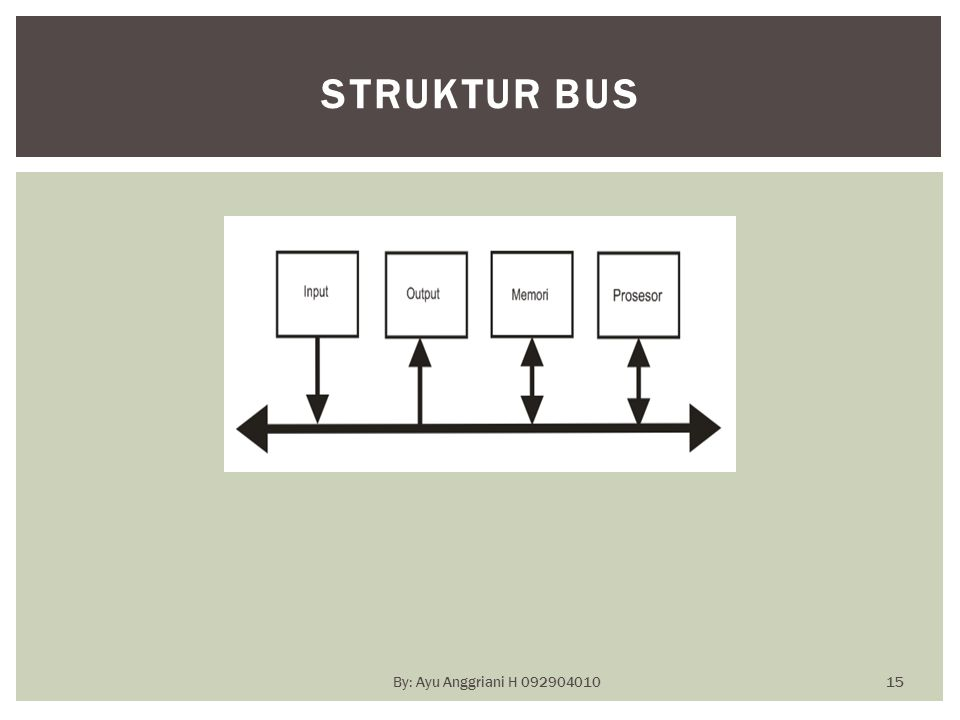STRUKTUR BUS By: Ayu Anggriani H 092904010