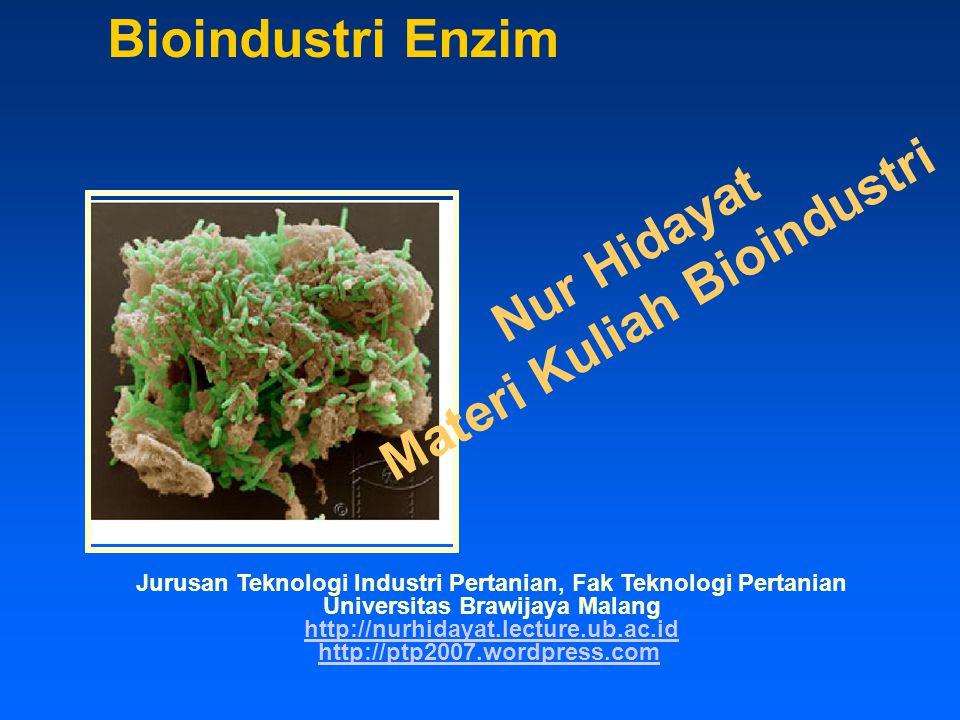 Bioindustri Enzim Materi Kuliah Bioindustri Nur Hidayat