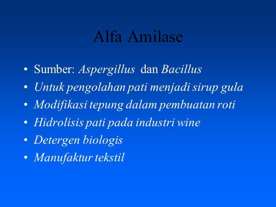 Alfa Amilase Sumber: Aspergillus dan Bacillus