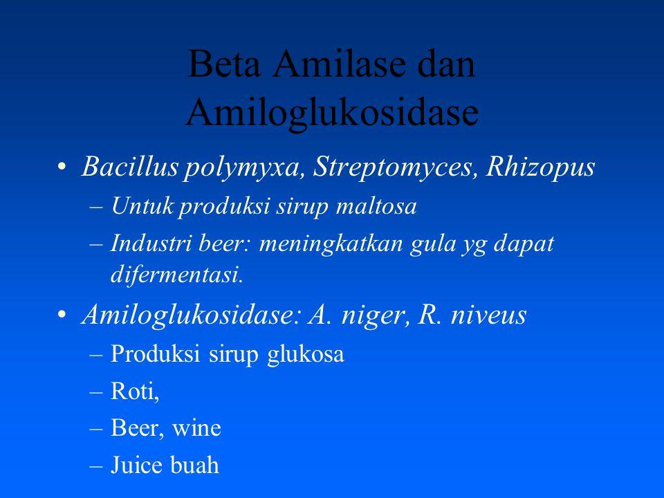 Beta Amilase dan Amiloglukosidase