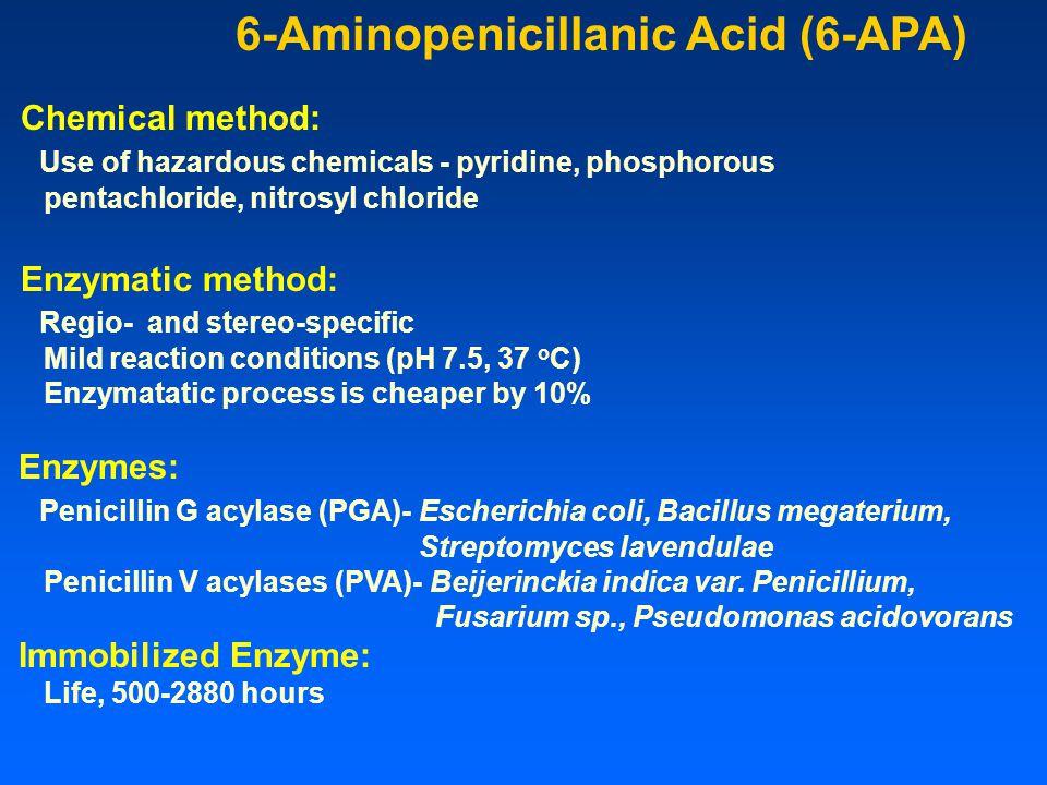 6-Aminopenicillanic Acid (6-APA)