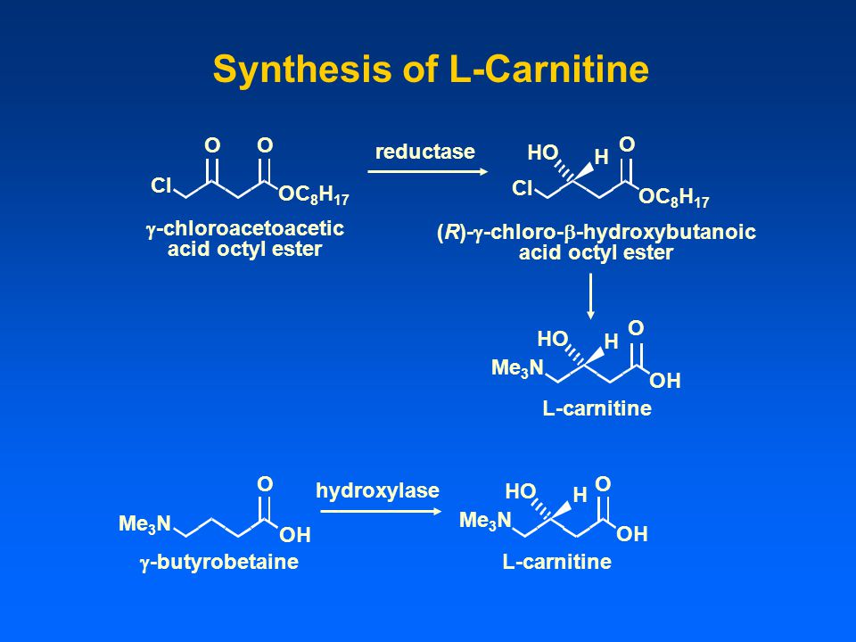 Synthesis of L-Carnitine (R)-g-chloro-b-hydroxybutanoic