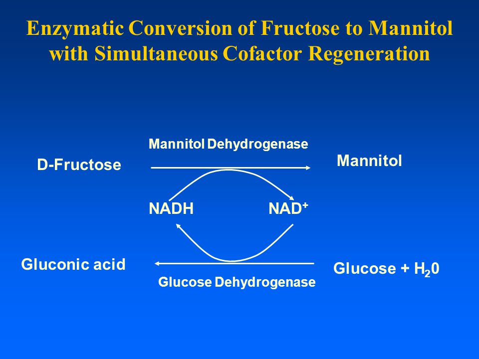 Enzymatic Conversion of Fructose to Mannitol