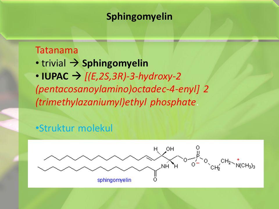 Sphingomyelin Tatanama. trivial  Sphingomyelin.