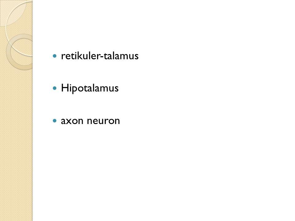 retikuler-talamus Hipotalamus axon neuron