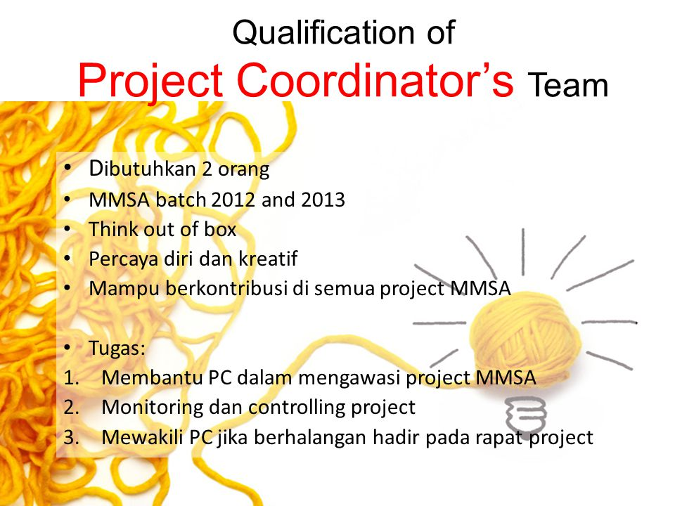 Qualification of Project Coordinator's Team