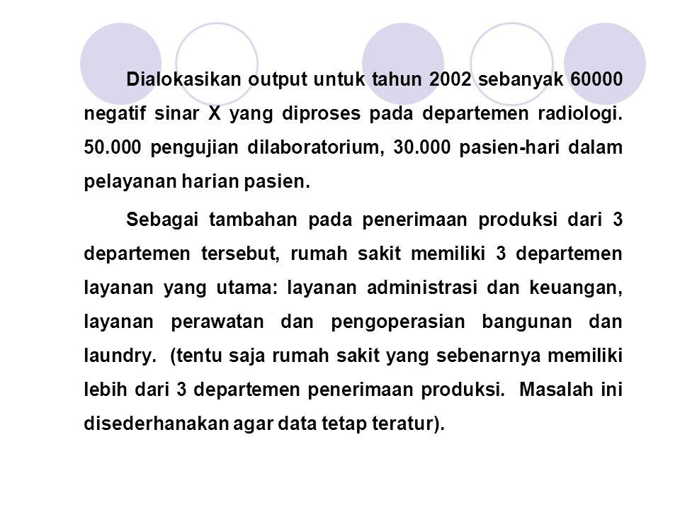Dialokasikan output untuk tahun 2002 sebanyak 60000 negatif sinar X yang diproses pada departemen radiologi. 50.000 pengujian dilaboratorium, 30.000 pasien-hari dalam pelayanan harian pasien.