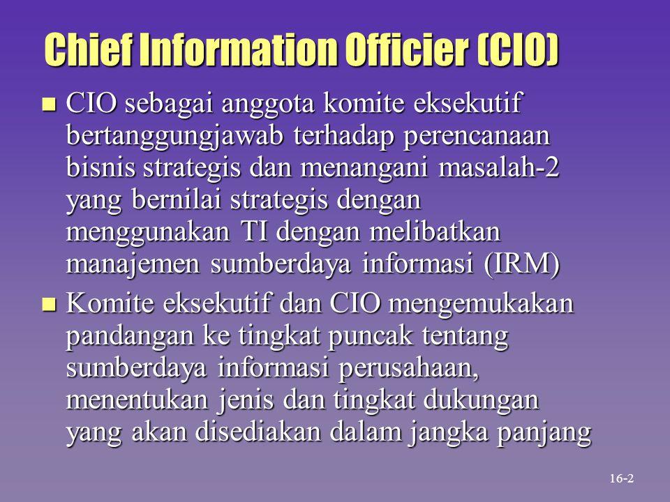 Chief Information Officier (CIO)