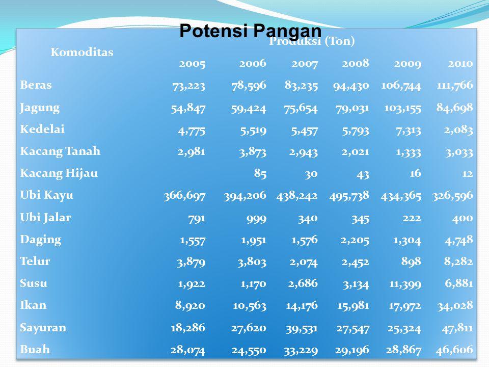 Potensi Pangan Komoditas Produksi (Ton) 2005 2006 2007 2008 2009 2010