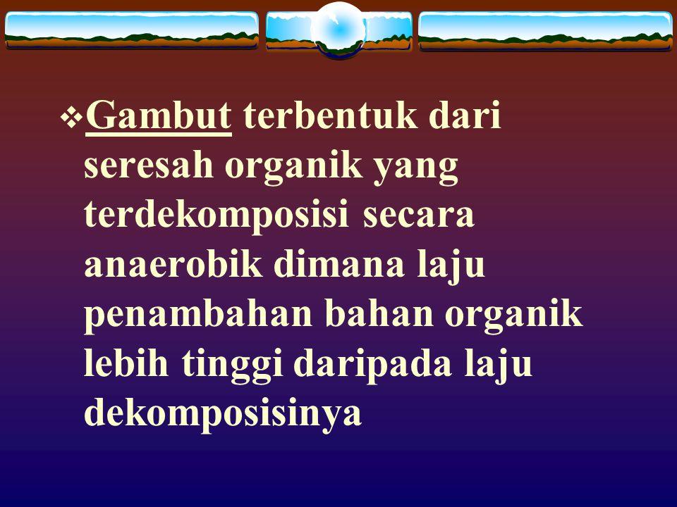 Gambut terbentuk dari seresah organik yang terdekomposisi secara anaerobik dimana laju penambahan bahan organik lebih tinggi daripada laju dekomposisinya