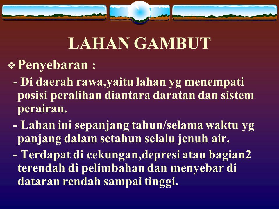 LAHAN GAMBUT Penyebaran :