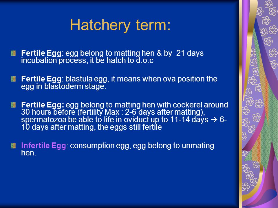 Hatchery term: Fertile Egg: egg belong to matting hen & by 21 days incubation process, it be hatch to d.o.c.