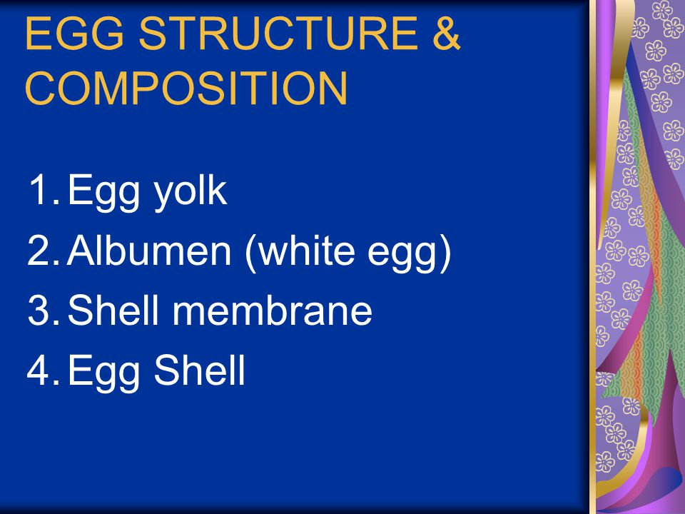 EGG STRUCTURE & COMPOSITION