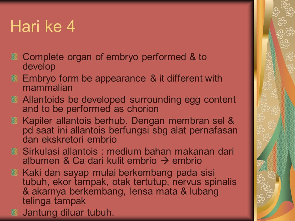 Hari ke 4 Complete organ of embryo performed & to develop