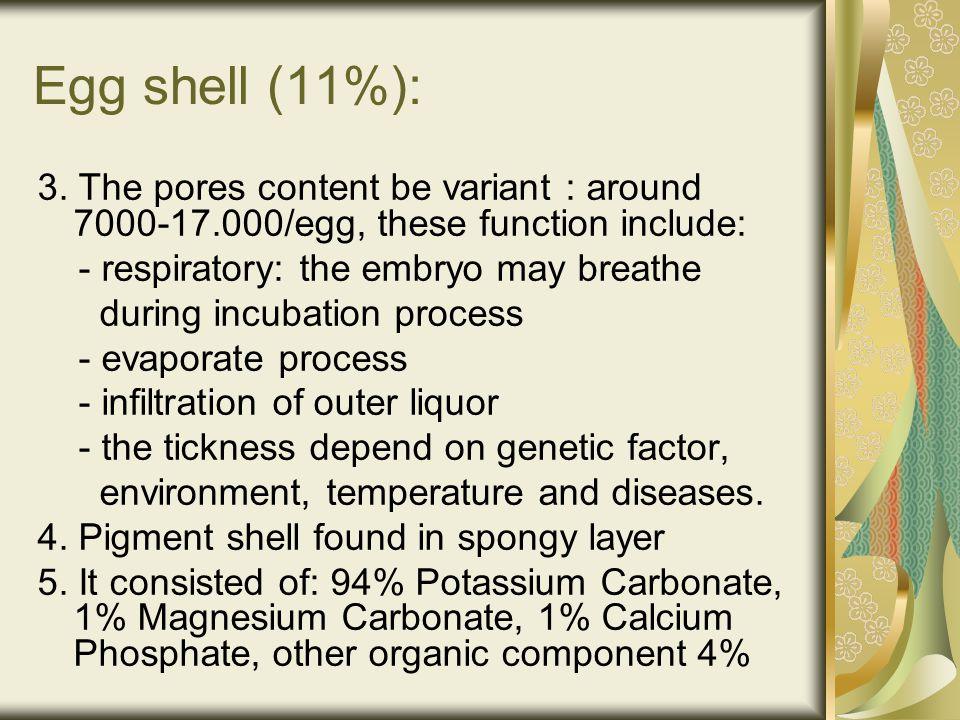 Egg shell (11%): 3. The pores content be variant : around 7000-17.000/egg, these function include: