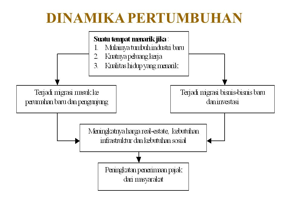 DINAMIKA PERTUMBUHAN
