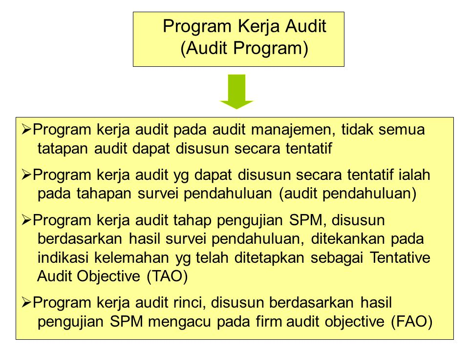 Program Kerja Audit (Audit Program)