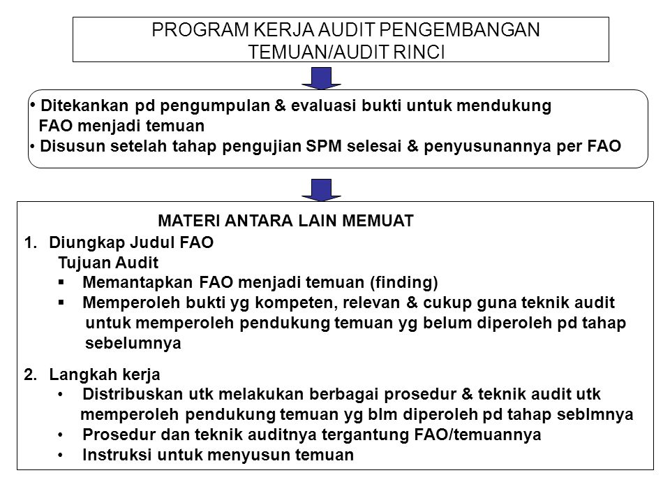 PROGRAM KERJA AUDIT PENGEMBANGAN TEMUAN/AUDIT RINCI