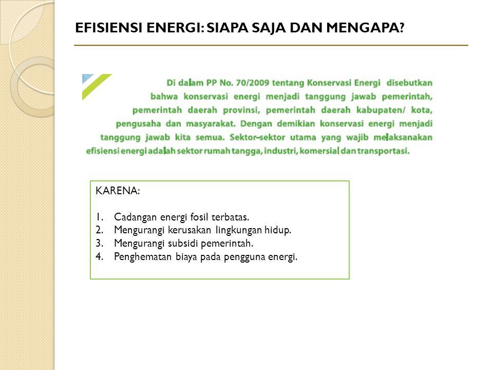 EFISIENSI ENERGI: SIAPA SAJA DAN MENGAPA