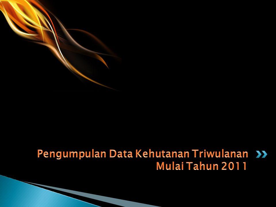 Pengumpulan Data Kehutanan Triwulanan Mulai Tahun 2011