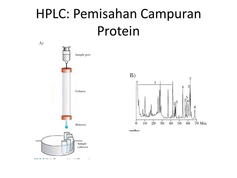 HPLC: Pemisahan Campuran Protein