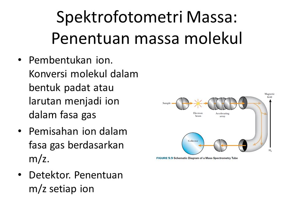 Spektrofotometri Massa: Penentuan massa molekul