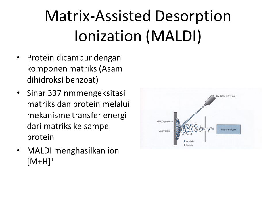 Matrix-Assisted Desorption Ionization (MALDI)