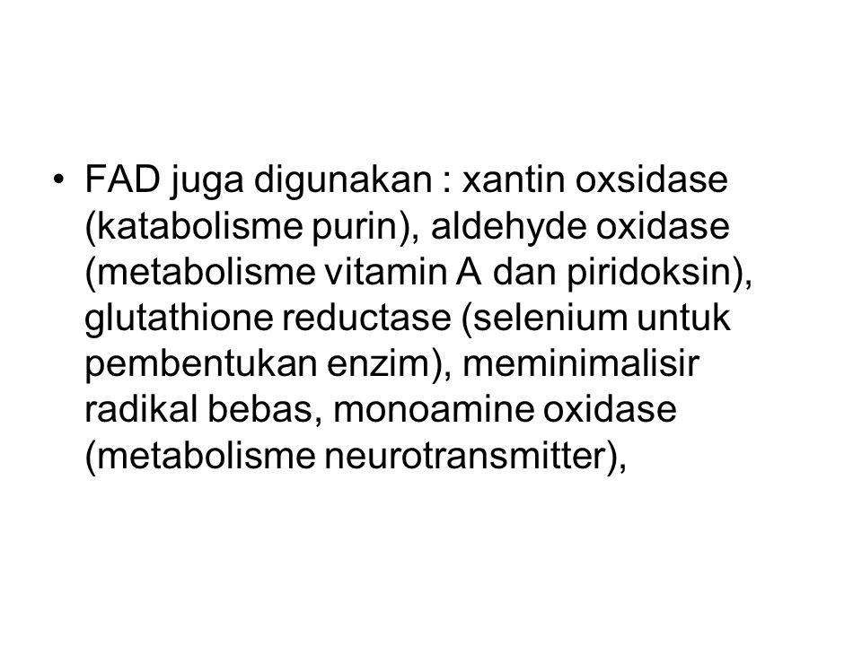FAD juga digunakan : xantin oxsidase (katabolisme purin), aldehyde oxidase (metabolisme vitamin A dan piridoksin), glutathione reductase (selenium untuk pembentukan enzim), meminimalisir radikal bebas, monoamine oxidase (metabolisme neurotransmitter),