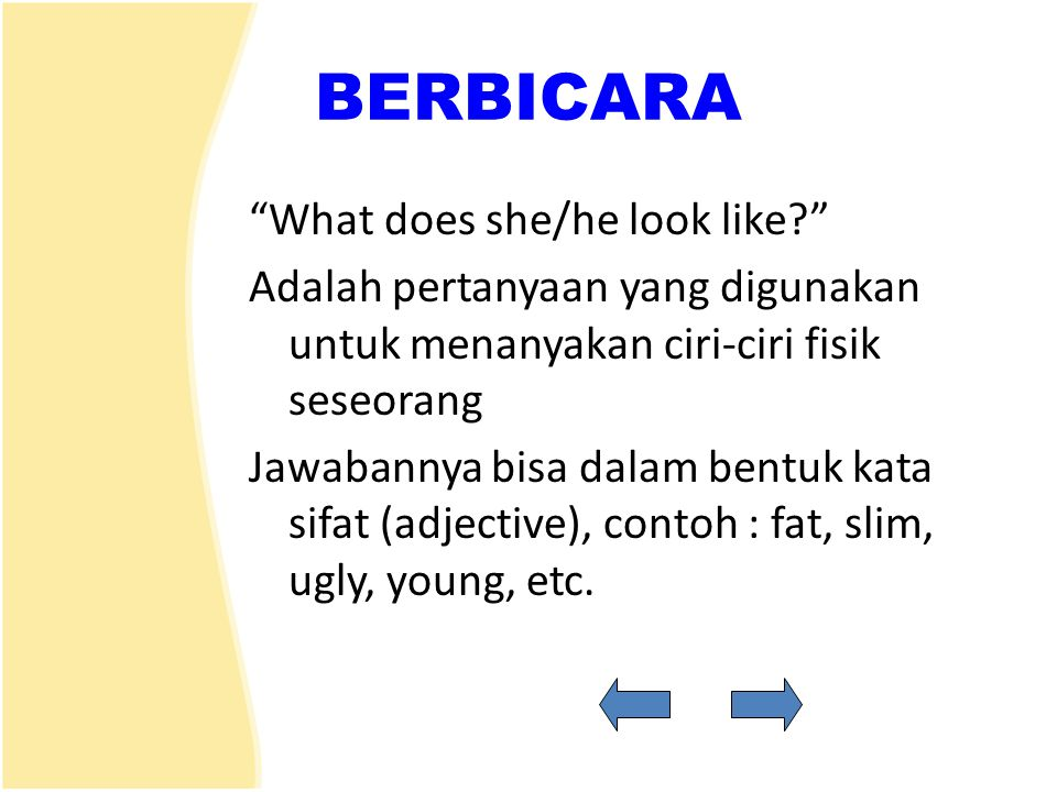 BERBICARA What does she/he look like