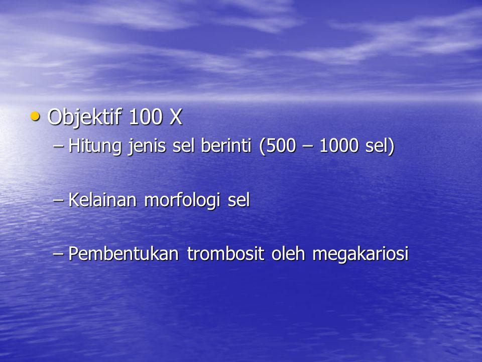 Objektif 100 X Hitung jenis sel berinti (500 – 1000 sel)