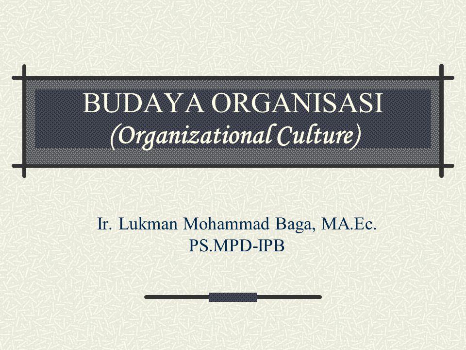 BUDAYA ORGANISASI (Organizational Culture)