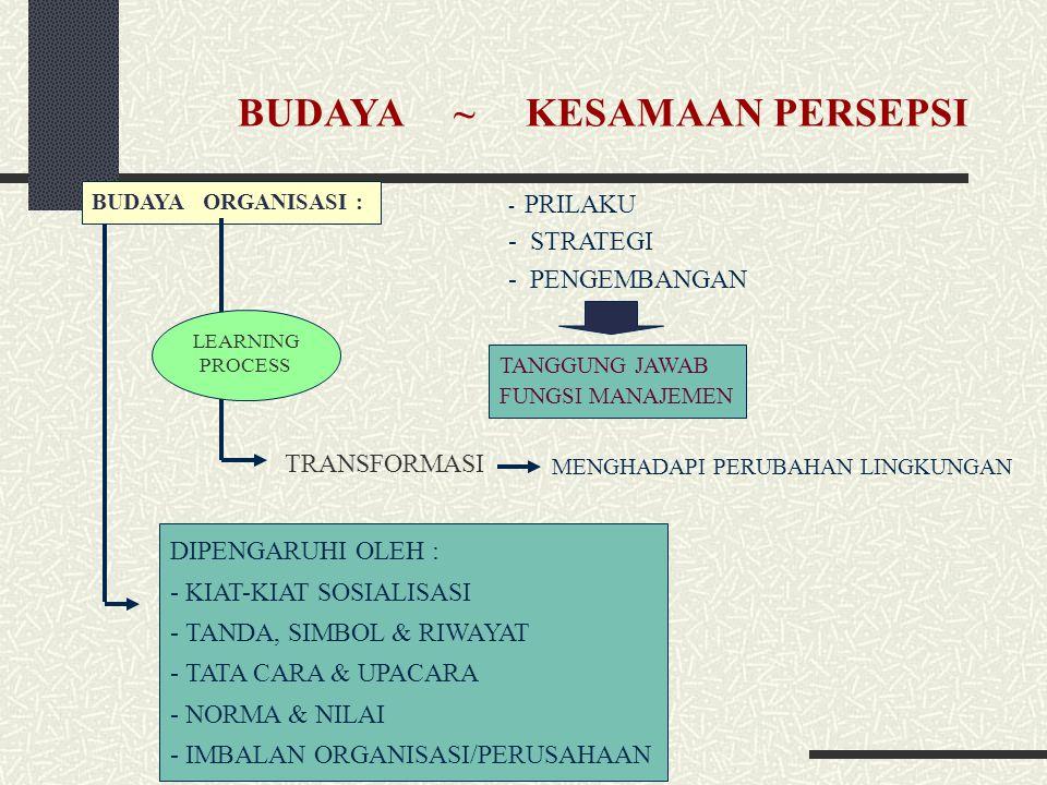 BUDAYA ~ KESAMAAN PERSEPSI