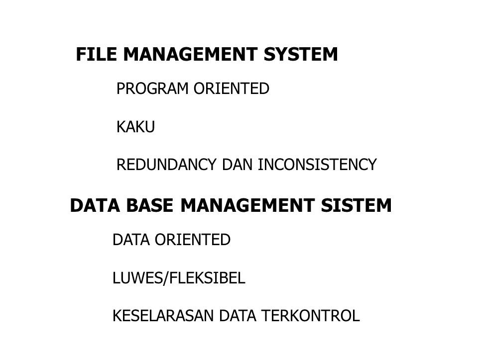 FILE MANAGEMENT SYSTEM DATA BASE MANAGEMENT SISTEM