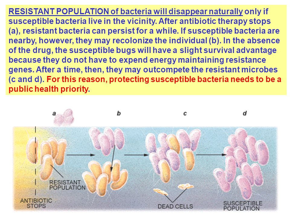 RESISTANT POPULATION of bacteria will disappear naturally only if susceptible bacteria live in the vicinity.