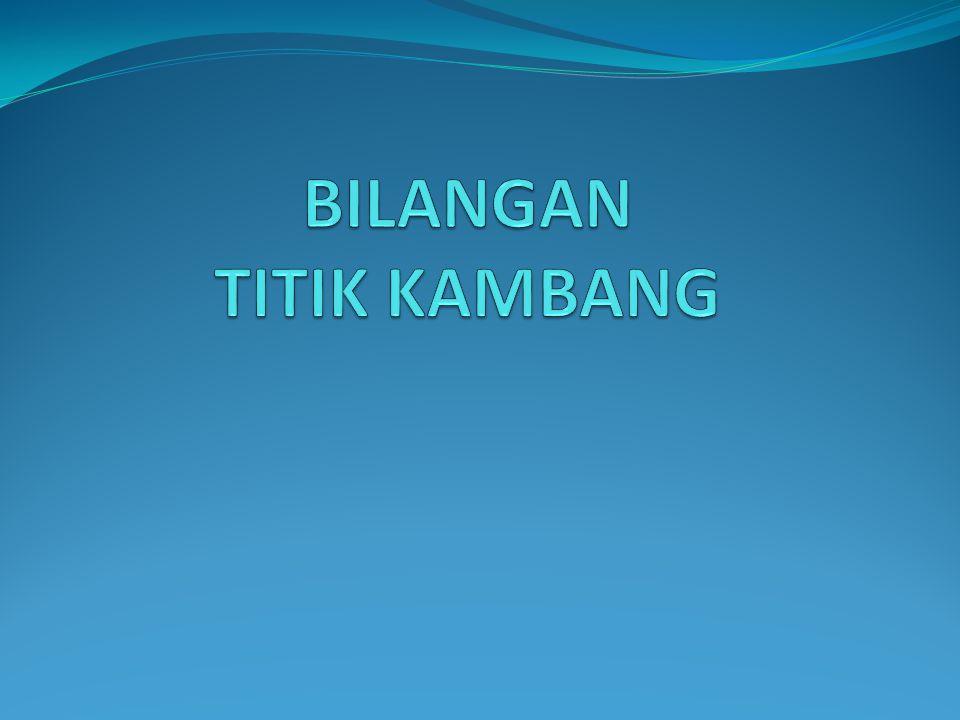 BILANGAN TITIK KAMBANG