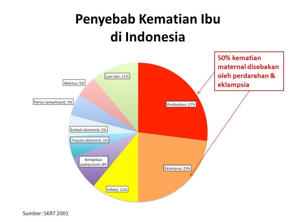 Penyebab Kematian Ibu di Indonesia