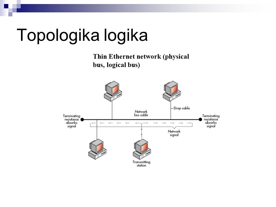 Topologika logika Thin Ethernet network (physical bus, logical bus)