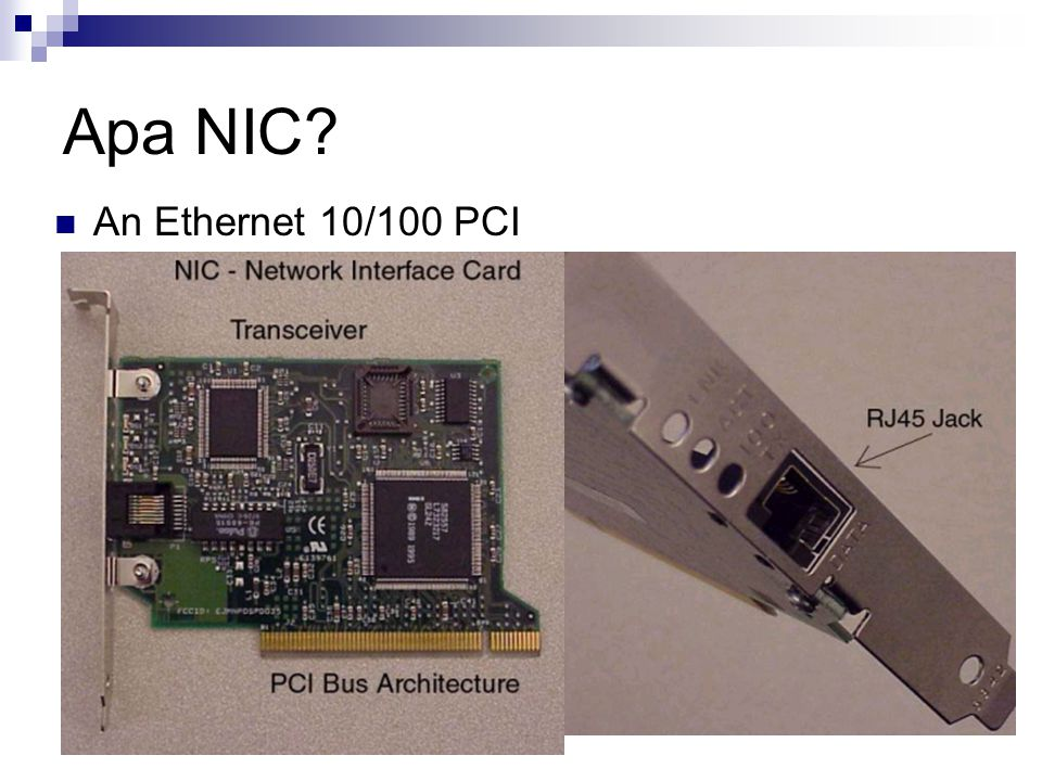 Apa NIC An Ethernet 10/100 PCI