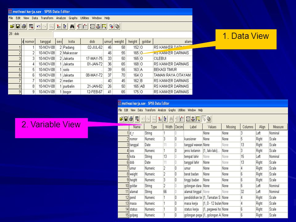 1. Data View 2. Variable View
