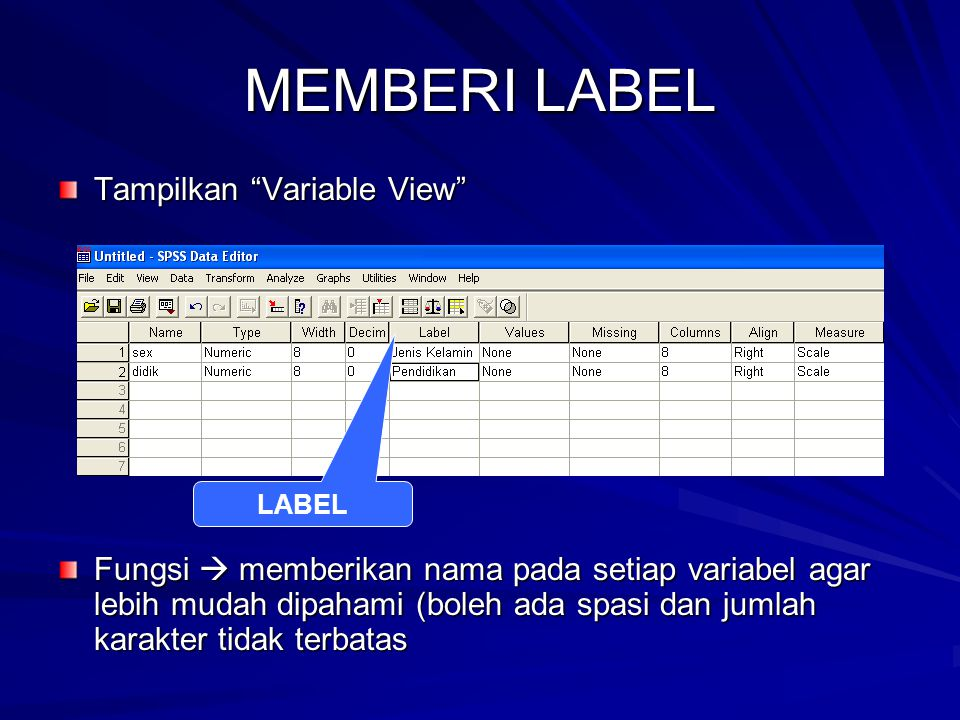 MEMBERI LABEL Tampilkan Variable View
