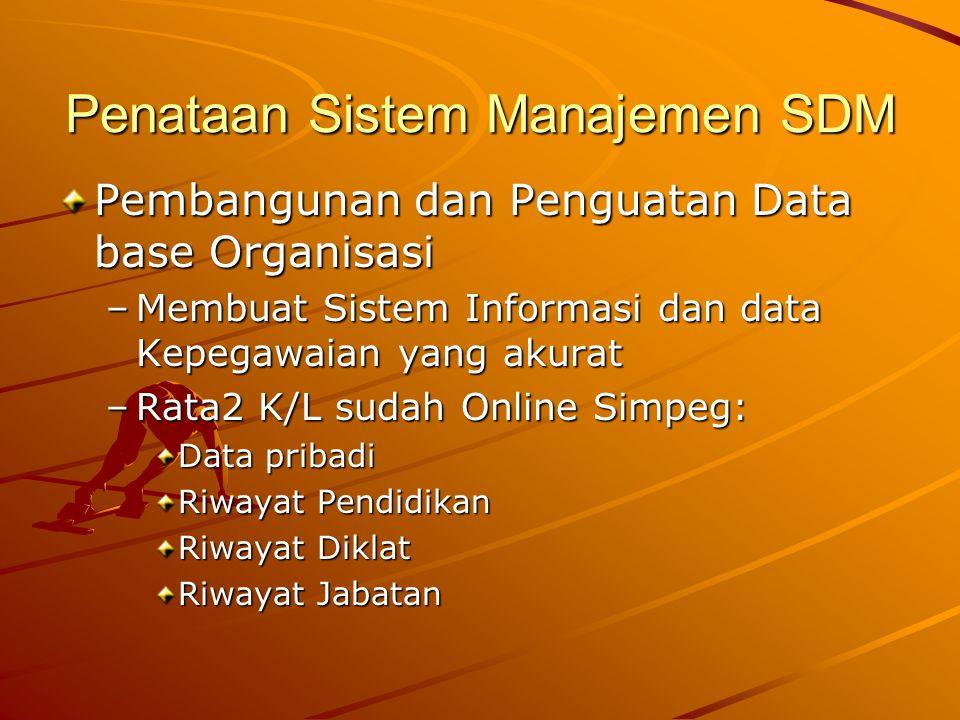 Penataan Sistem Manajemen SDM