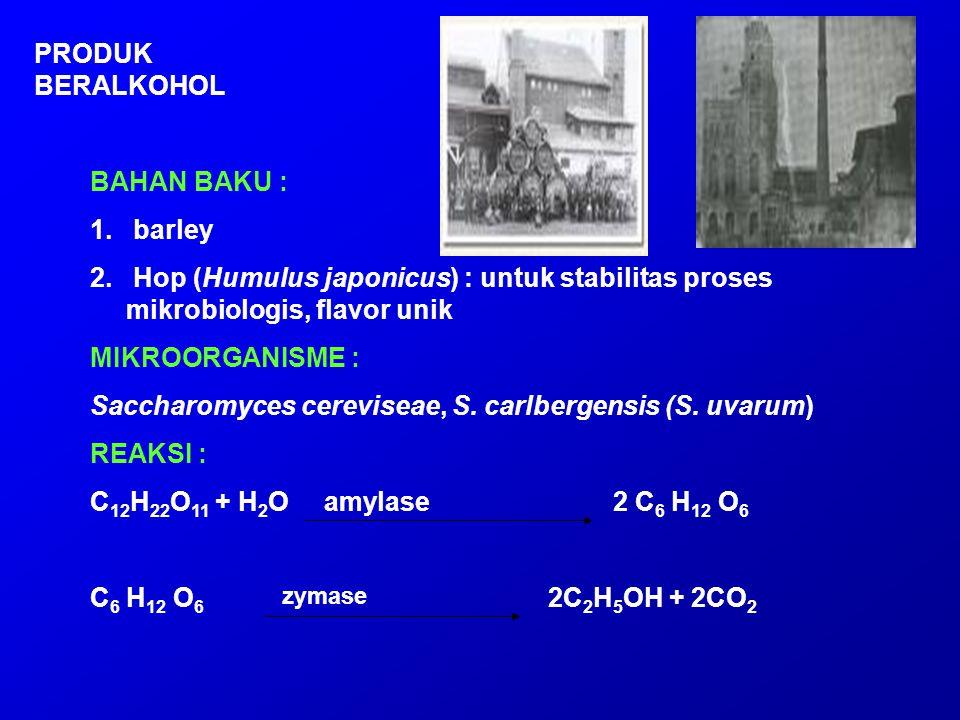 Saccharomyces cereviseae, S. carlbergensis (S. uvarum) REAKSI :