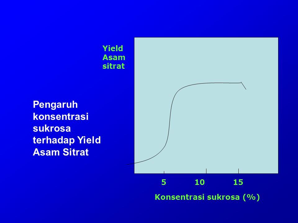 Pengaruh konsentrasi sukrosa terhadap Yield Asam Sitrat