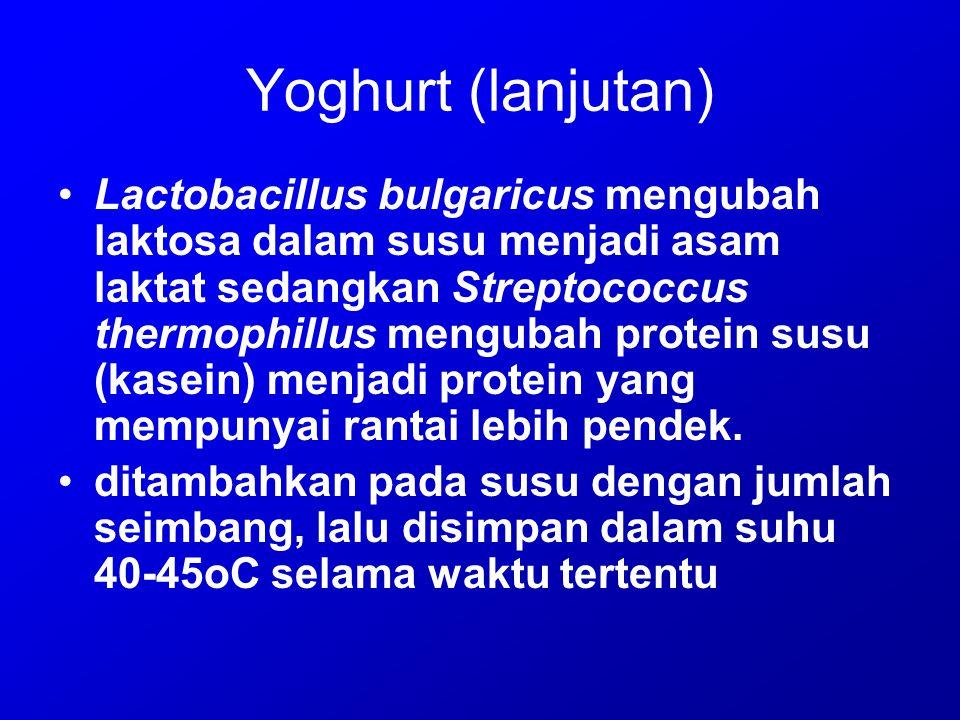 Yoghurt (lanjutan)