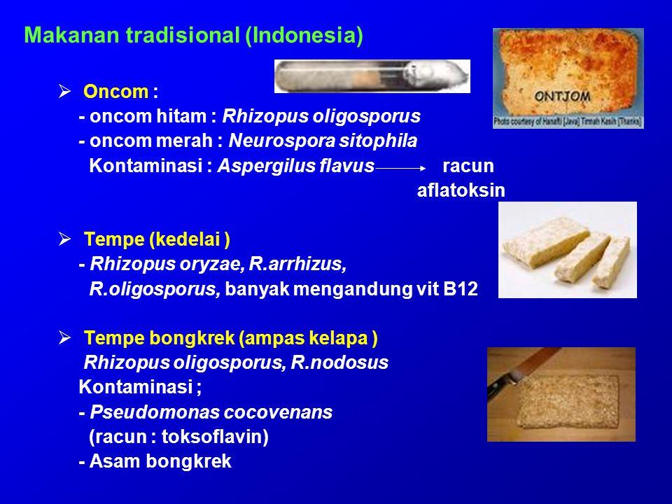 Makanan tradisional (Indonesia)